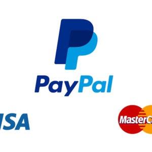 Paypal-Article-Techrasa.jpg